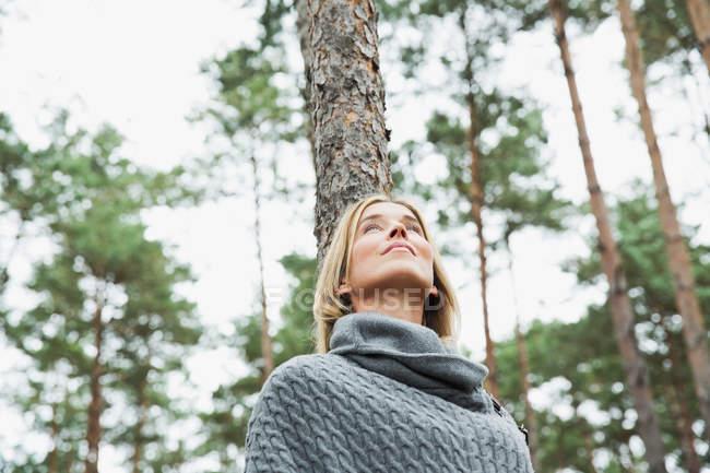 Mediados de mujer adulta en bosque, de bajo ángulo - foto de stock