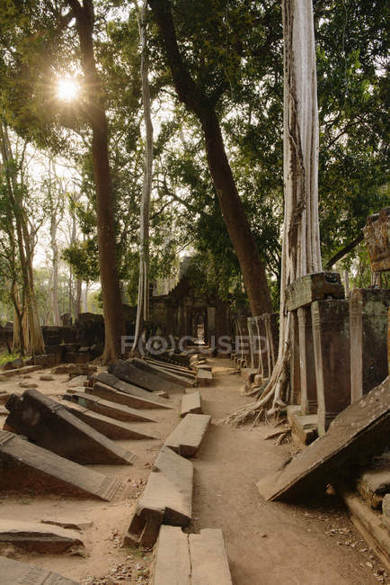 Рядки впали каміння, Тома Прасат, Ко Ker, Камбоджа — стокове фото