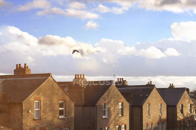 Fila di tetti di casa a schiera — Foto stock