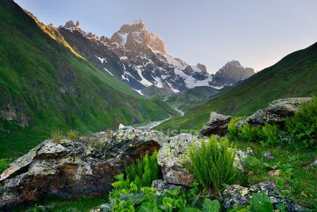 Sommet de montagne vallée et Ushba, Svanétie, Géorgie — Photo de stock