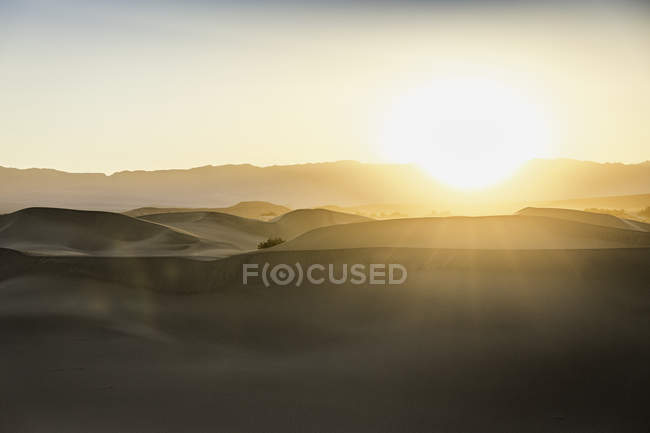 Sunlit Mesquite Flat Sand Dunes in Death Valley National Park, California, USA — Stock Photo