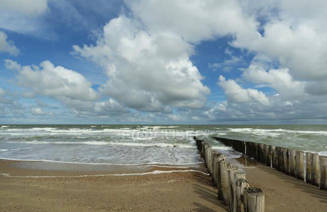 En bois de brise-lames et un paysage marin, Domburg, Zeeland, Pays-Bas — Photo de stock