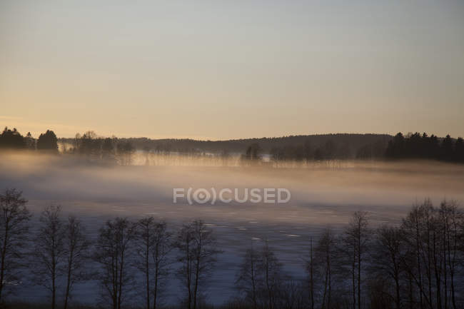 Scenic view of forests and valley covered in mist at sunrise — Stock Photo