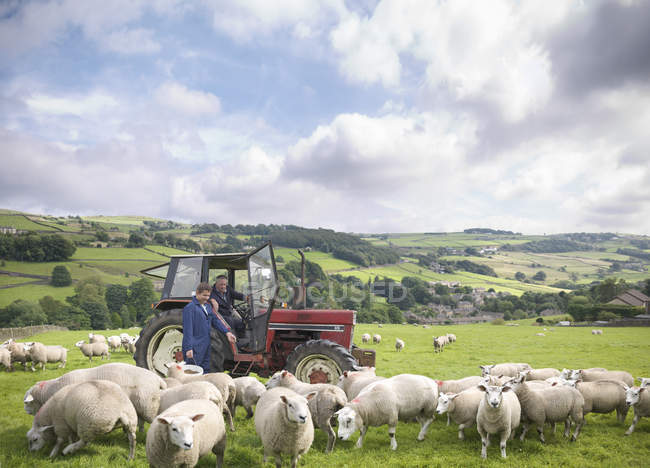 Farmer in tractor with son watching sheep in field — Stock Photo