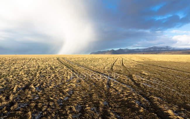 Marcas de pneu no campo — Fotografia de Stock