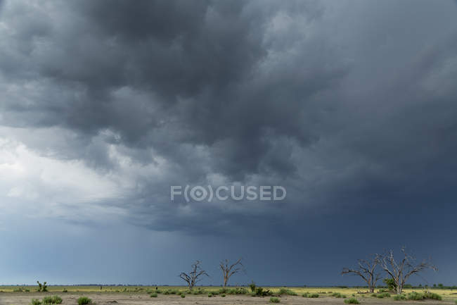 Storm clouds over landscape, Kasane, Chobe National Park, Botswana, Africa — Stock Photo