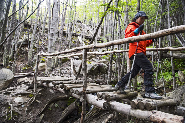 Female hiker passing a wooden bridge on the way up to Torres del Paine National Park, Patagonia, Chile — Stock Photo