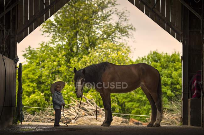 Мальчик с лошадью — стоковое фото