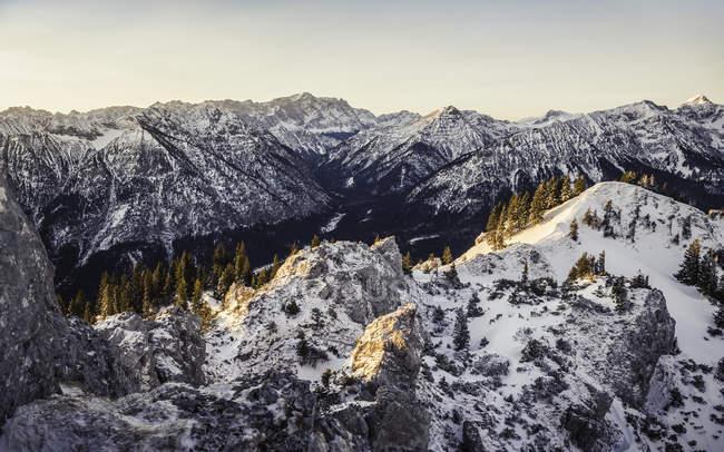 Montagnes enneigées avec arbres et lumière du lever du soleil — Photo de stock