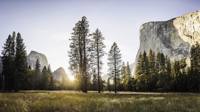 Formação de prados e rochas ao pôr-do-sol, Parque Nacional de Yosemite, Califórnia, EUA — Fotografia de Stock