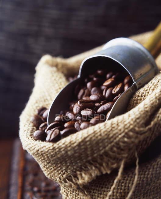 Granos de café en saco tejido con cucharada de café vintage - foto de stock
