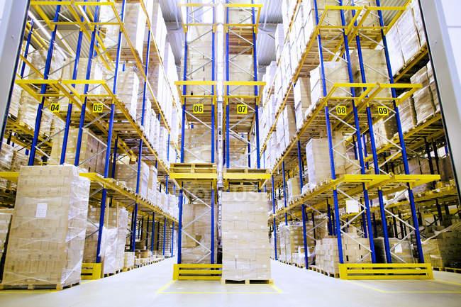 Palettes et étagères de boîtes dans l'entrepôt de distribution — Photo de stock