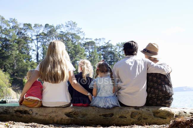 Вид сзади друзей семьи, сидящих на стволе дерева на пляже, Новая Зеландия — стоковое фото