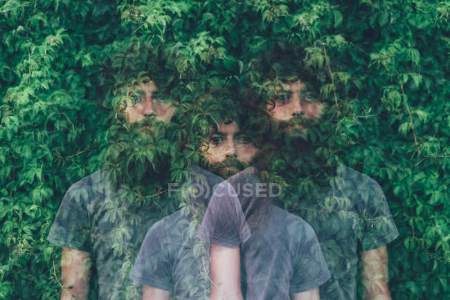 Triple exposure portrait of transparent young man and green foliage — Stock Photo