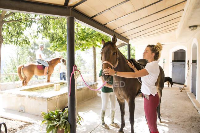 Жіночий конюхи з коні в сільській стайні — стокове фото