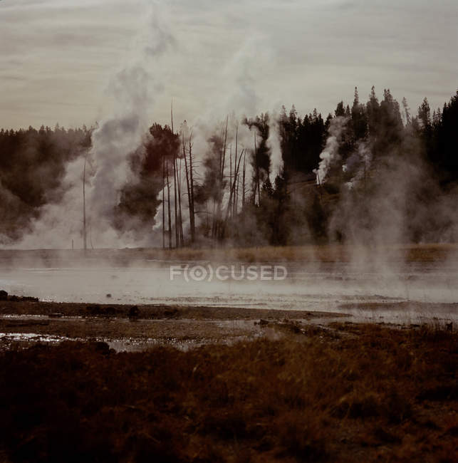 Thermal vents in Yellowstone National Park — Stock Photo