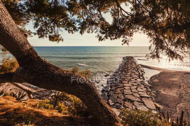 Scenic view of Cervo, Liguria, Italy — Stock Photo