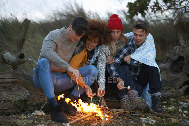 Four adult friends huddled together toasting marshmallows on beach at dusk — Stock Photo