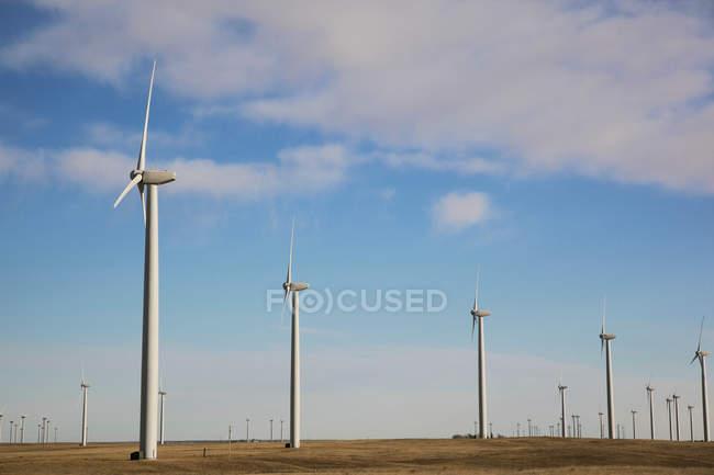 Turbinas eólicas lado a lado com céu azul nublado — Fotografia de Stock