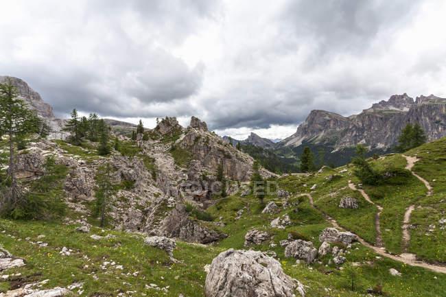 Vale rochoso com grama verde e árvores sob o céu nublado — Fotografia de Stock