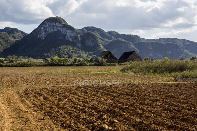 Vista di paesaggio del campo e le montagne su priorità bassa — Foto stock
