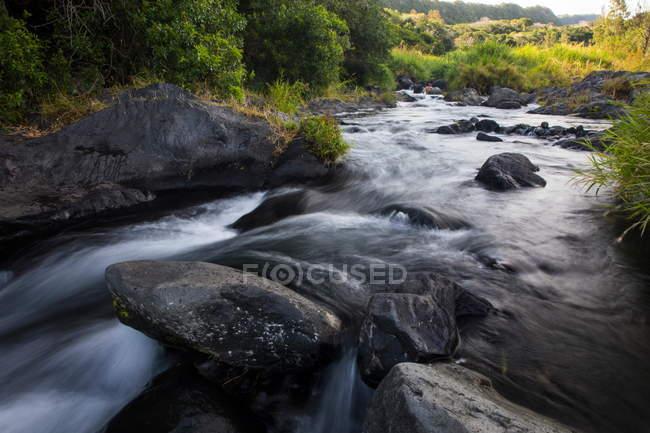 Río que fluye sobre rocas, Isla Reunión - foto de stock
