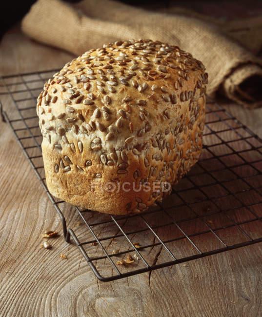 Fresco al horno pan sin semillas en refrigeración rack - foto de stock