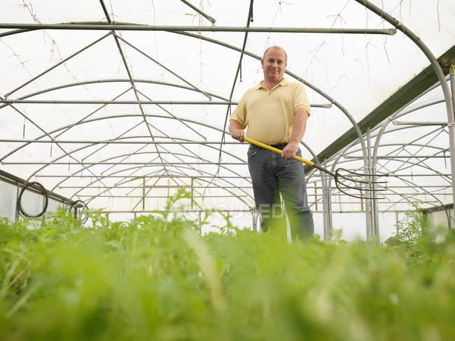 Farmer Standing In Polytunnel — Stockfoto