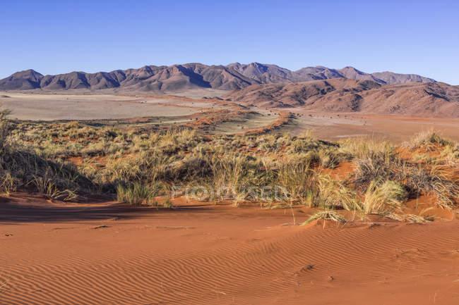 Vue panoramique sur le désert de namib avec des montagnes au soleil — Photo de stock