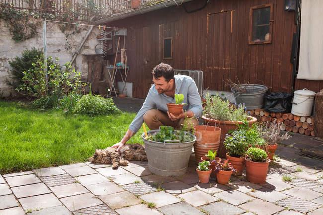 Man in garden tending to plants — Stock Photo