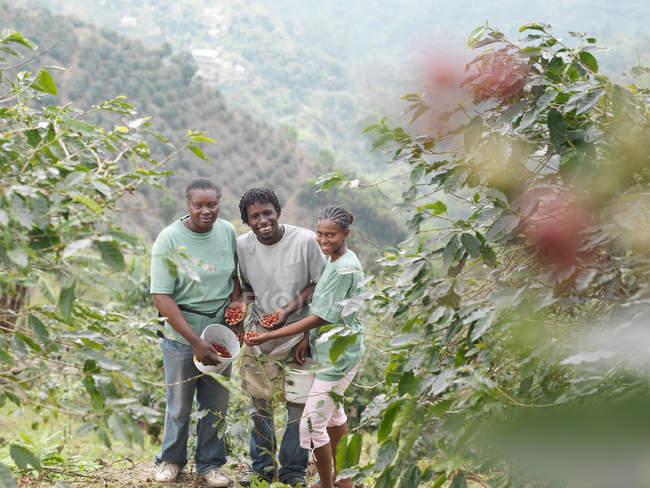 Travailleurs du café avec grains de café — Photo de stock