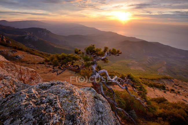 Vue panoramique sur les montagnes et les arbres au coucher du soleil — Photo de stock