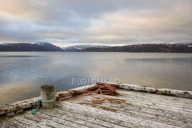 Bacino di legno di mare, Westfjords, Islanda — Foto stock