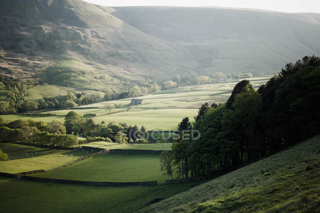 Valley in Early Summer Evening — Stock Photo