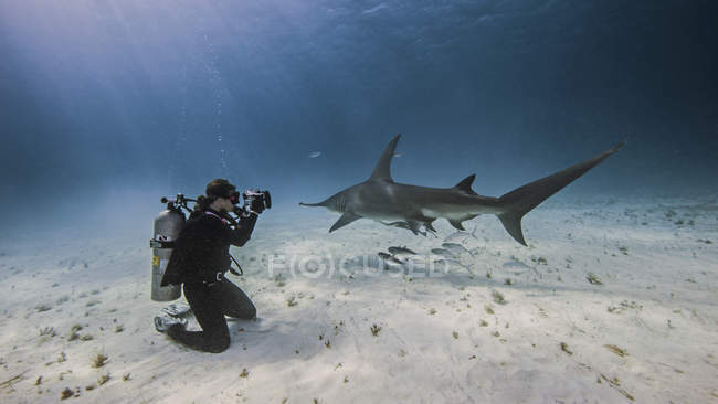 Underwater view of female underwater photographer, photographing from seabed — Stock Photo