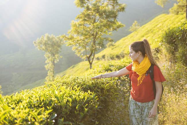 Junge Frau in Teeplantagen in der Nähe von Munnar, Kerala, Indien — Stockfoto