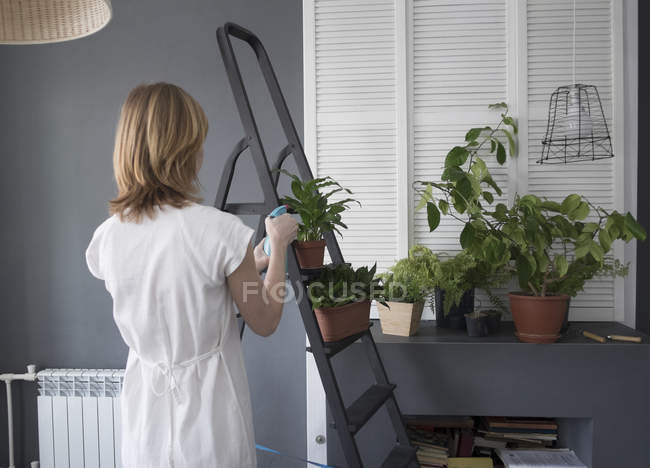 Rear view of woman watering pot plants on step ladder — Stock Photo