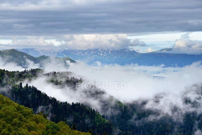 Долина туман, великий Thach природі парк, кавказьких гір, Республіка Адигея, Росія — стокове фото