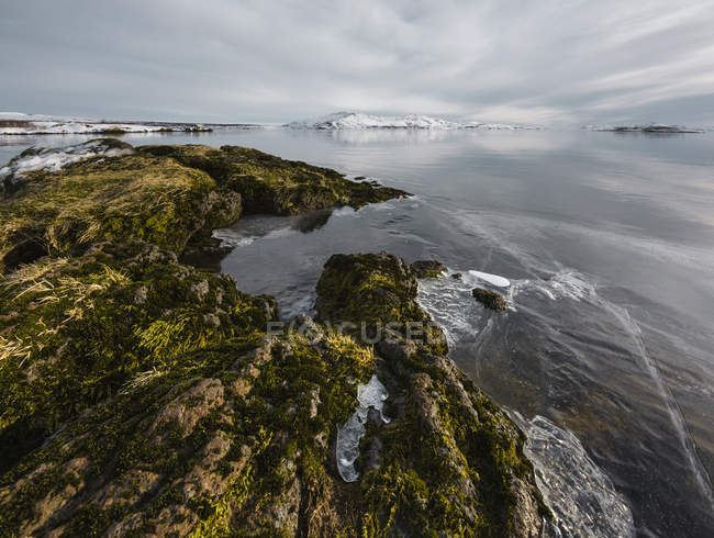 Ice on lake rocks at water edge, Thingvallavatn, Iceland — Stock Photo