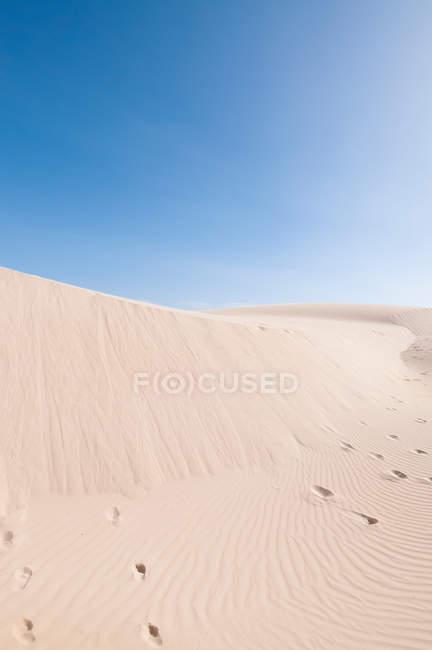 Sand dunes in desert — Stock Photo