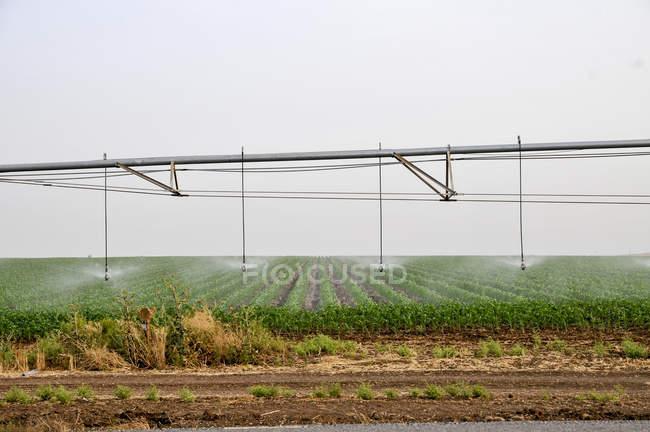 Robô de irrigação móvel é campo de rega — Fotografia de Stock