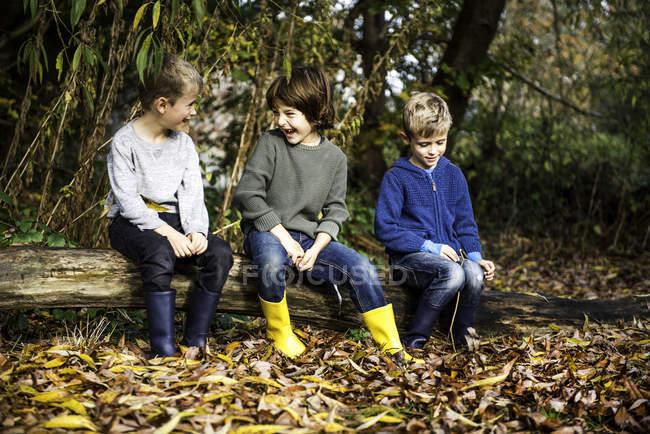 Три мальчика на улице, сидящие на бревне, окруженные осенней листвой — стоковое фото