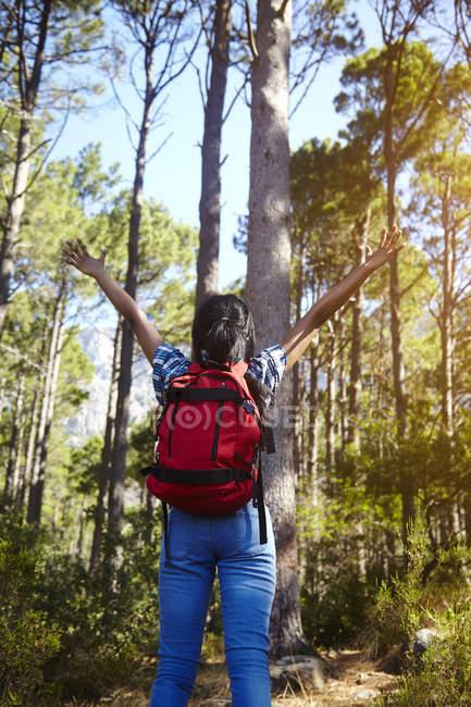 Giovane donna, escursioni, braccia alzate, guardando la vista, vista posteriore, Città del Capo, Sud Africa — Foto stock