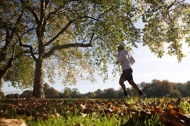 Correndo no parque de Londres — Fotografia de Stock