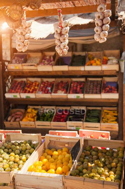 Productos frescos para la venta en el mercado con luz solar - foto de stock