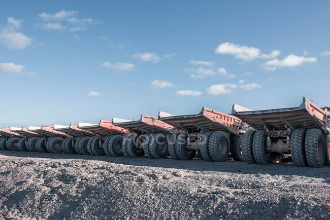 Dumper trucks in row — Stock Photo