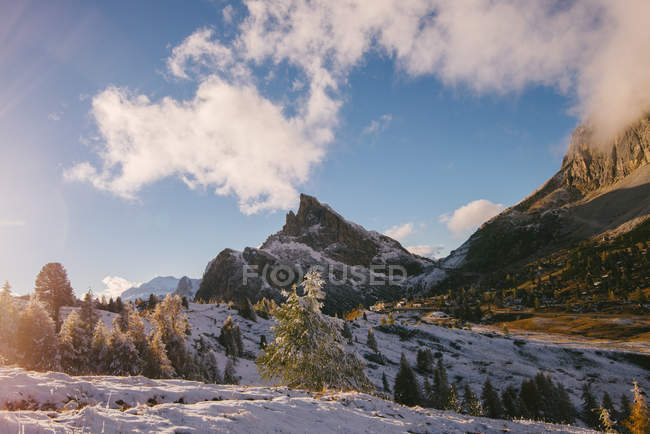 Snowcapped peaks and fir trees in sunlight with low clouds — Stock Photo