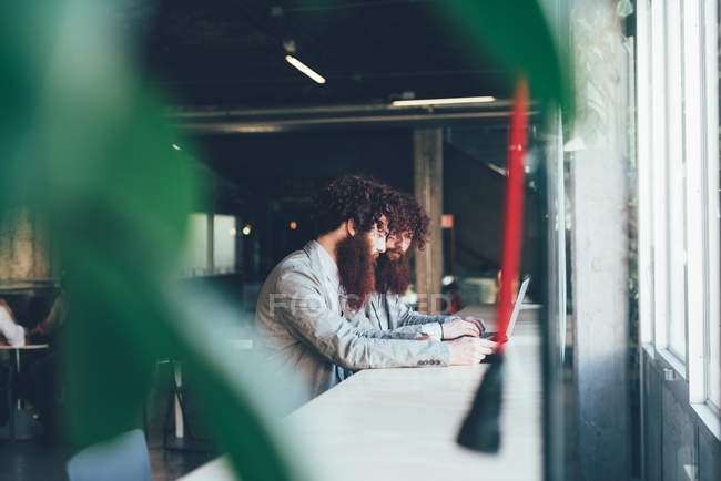 Male hipster twins working on laptop at office desk — Stock Photo