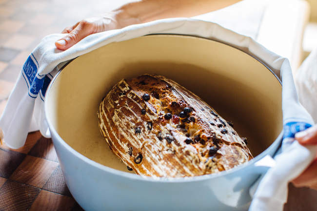 Female hands holding pot with homemade sourdough raisin bread — Stock Photo