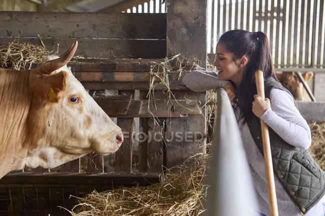 Vue latérale de la femme dans la grange face à face avec la vache — Photo de stock